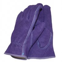 Town & Country Basic - Professional Gloves - Ladies Size - M